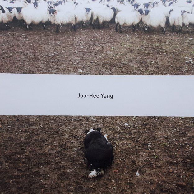 Joo-Hee Yang